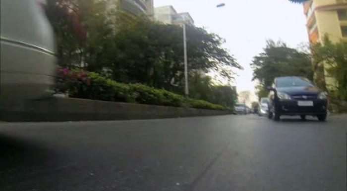 GoPro colocada em cachorro de rua (2)